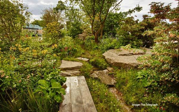best in show - chatsworth garden