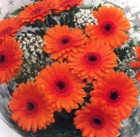 Vikiflowers flower deliveries