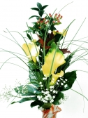 Vikiflowers online flower delivery Innocence Bouquet