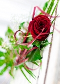 Vikiflowers flower deliveries Red Rose