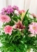 Vikiflowers send flowers online Sweet Princess Bouquet